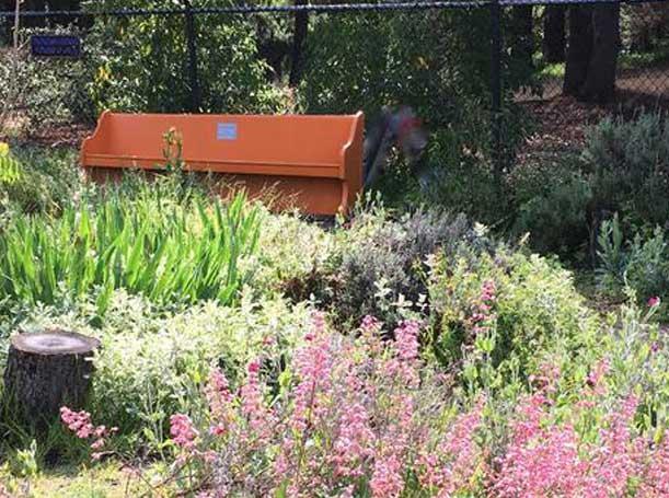 39th Ave Garden bench